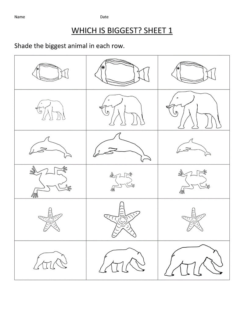 Free Toddler Worksheets Comparing