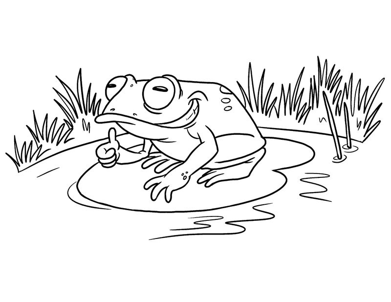 Frog Color Sheet Fun