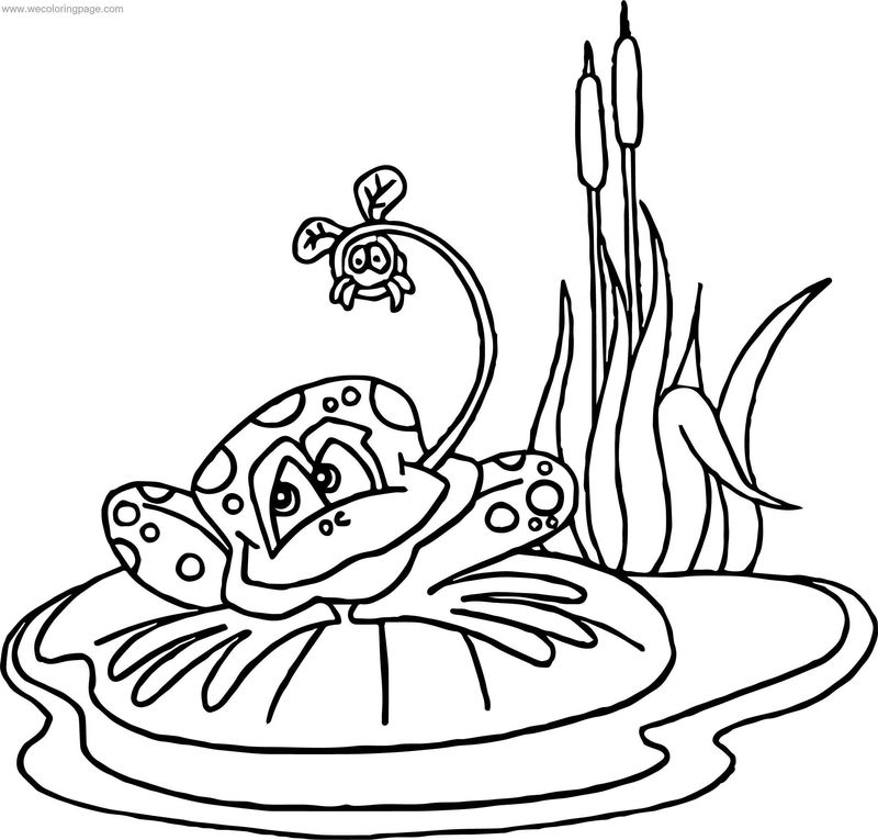 Frog On Water Coloring Page