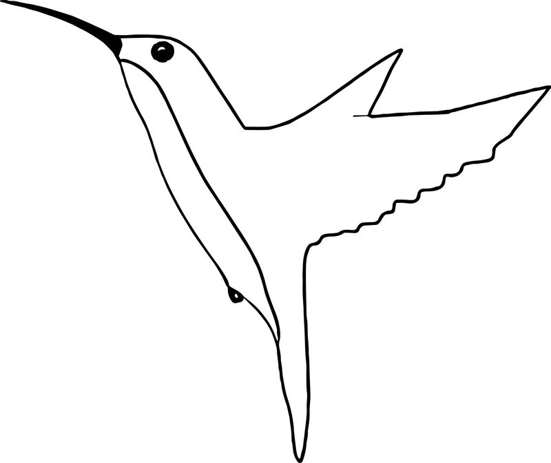 From Bird Coloring Page