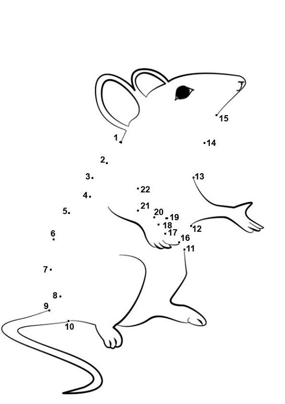 Fun Activity Worksheets For Kids Mouse