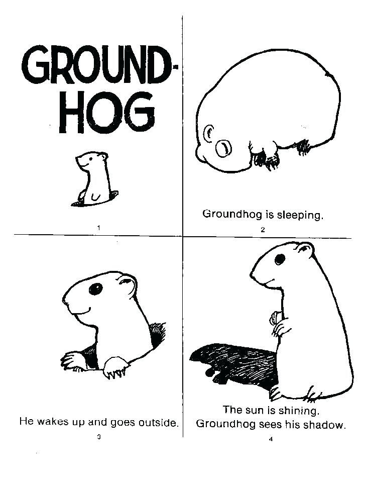 Groundhog Worksheet