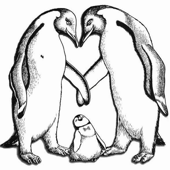 Happy Feet Illustrations In Black And White