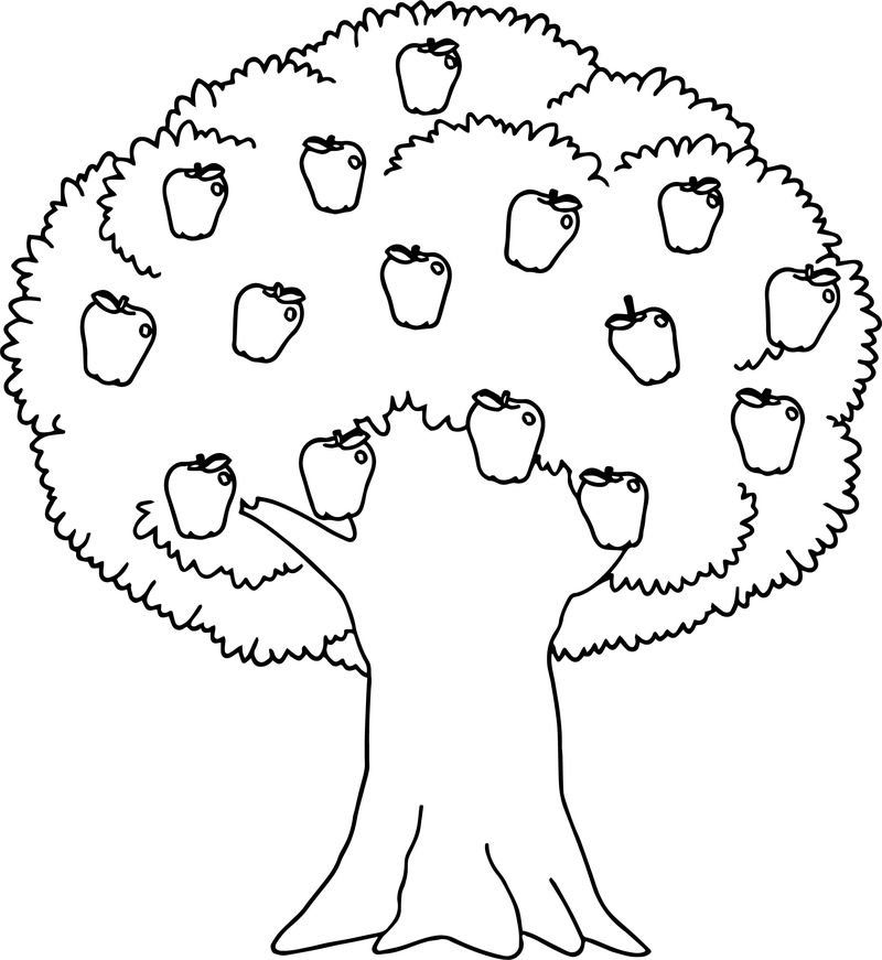 Healthy Apple Tree Coloring Page