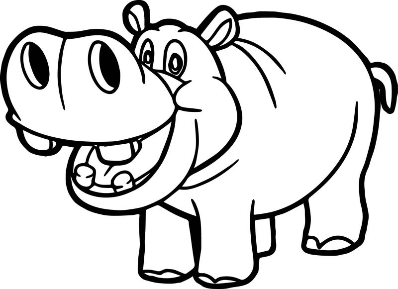 Hippopotamus animal coloring pages