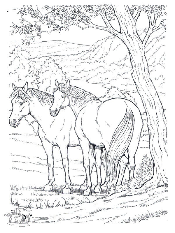 Horse Color Pages Printable 001
