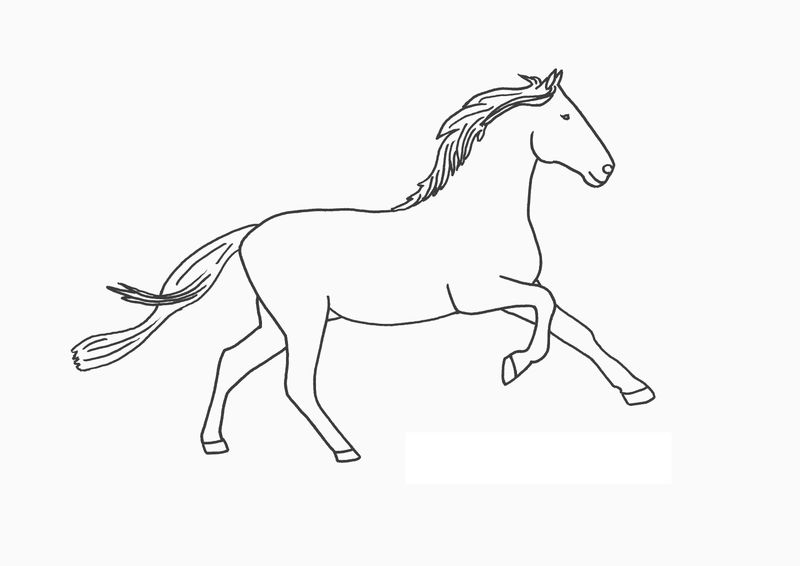 Horse Coloring Pages Free 1
