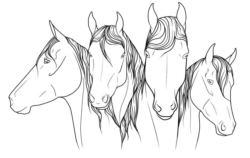 Horses Drawing To Color