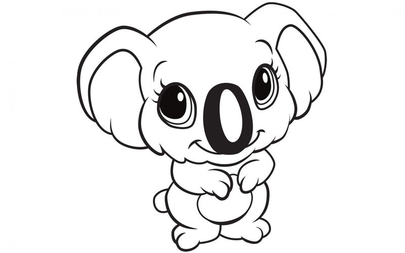 Koala Animal Coloring Pages