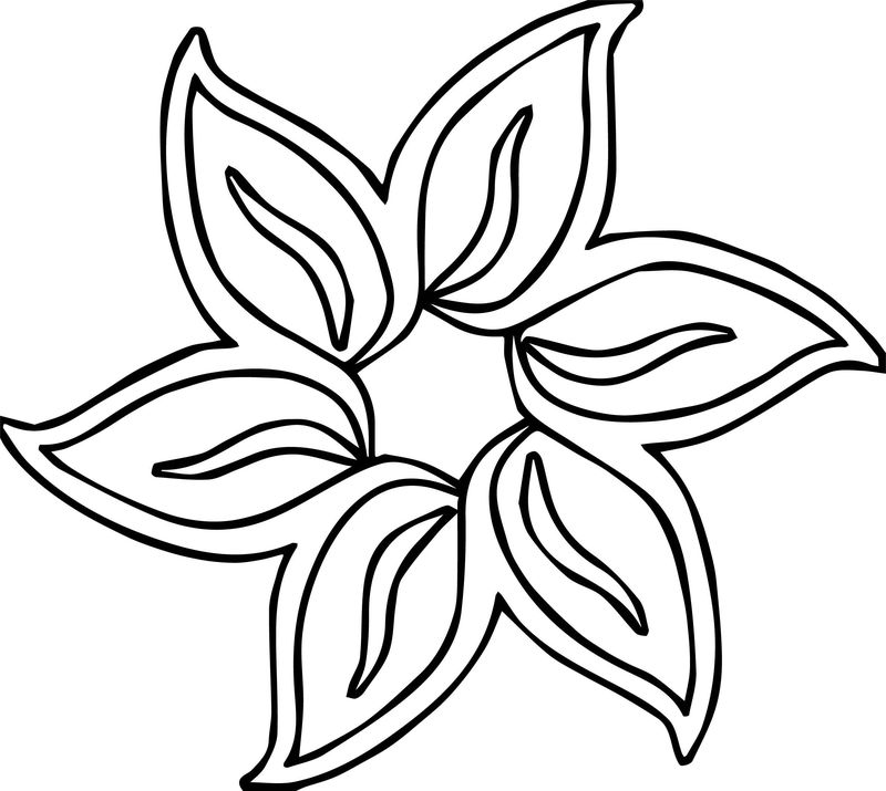 Lavender Flower Coloring Page