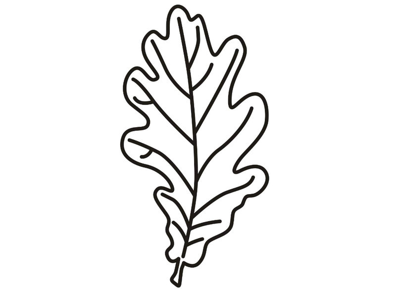 Leaf Coloring Page 2 001
