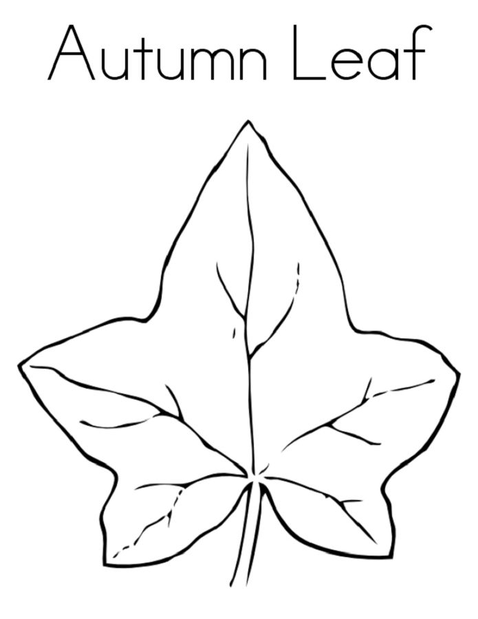 Leaf Coloring Page Autumn