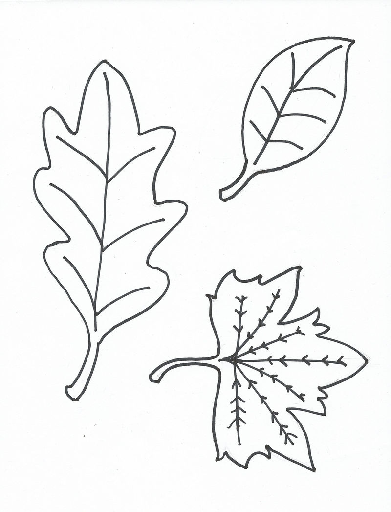 Leaf Coloring Page For Kids