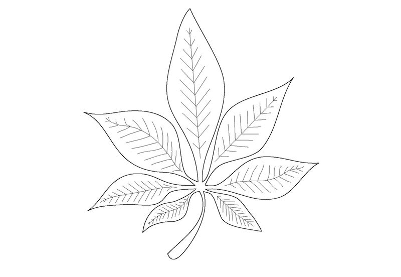 Leaf Coloring Page Preschool