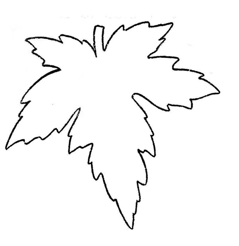 Leaf Coloring Page Simple