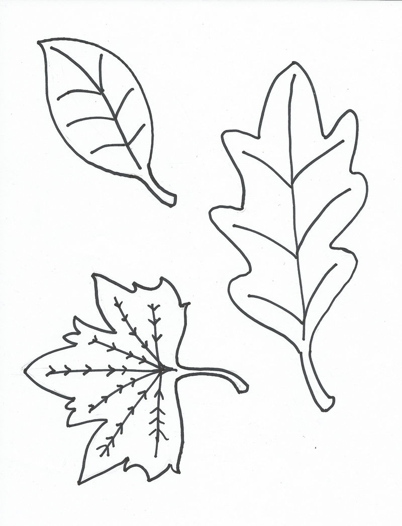 Leaf Coloring Pages Free Printables 001