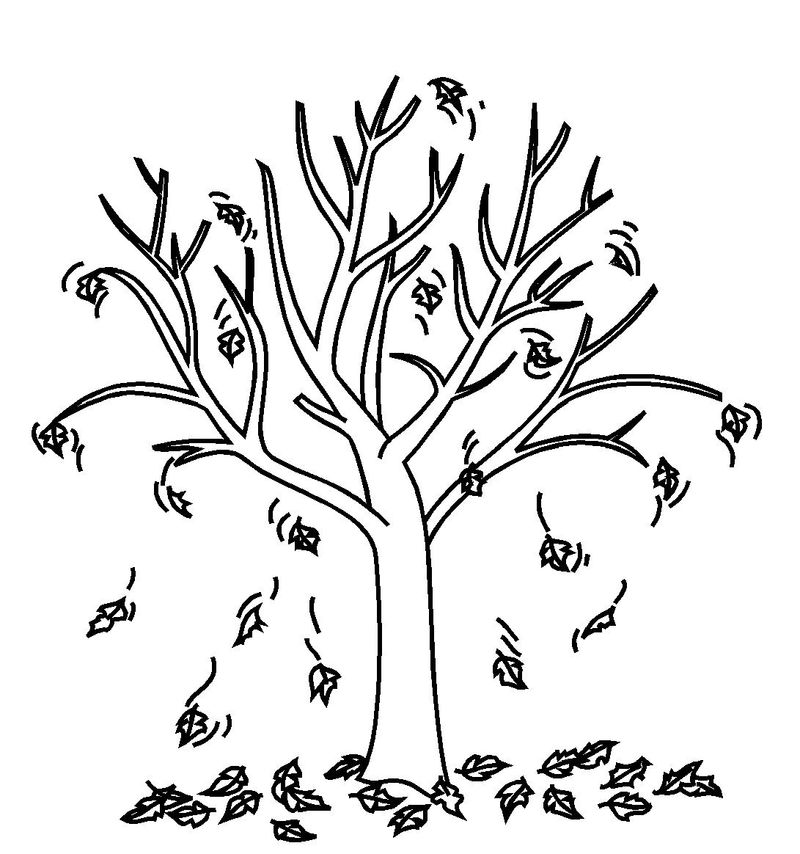 Leaves Falling Coloring Page 1