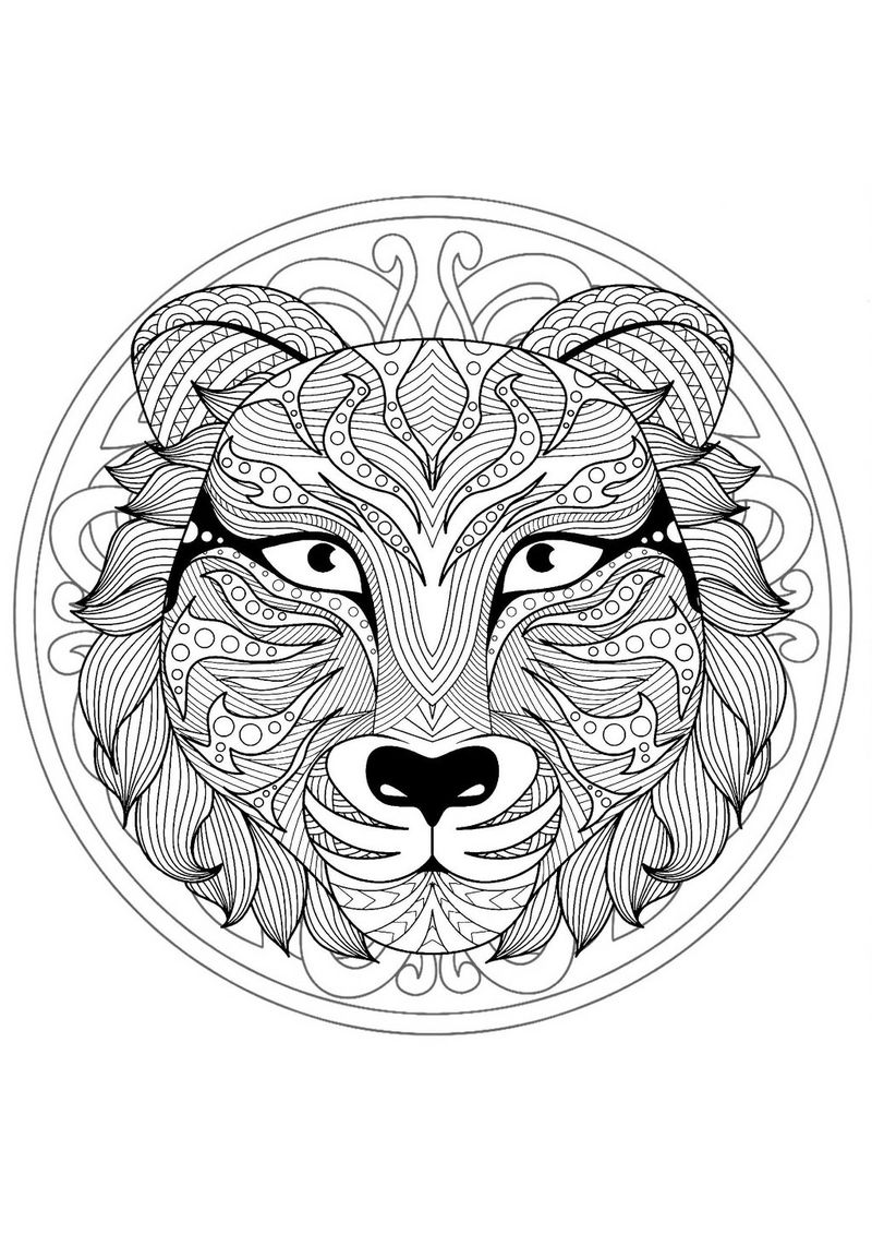 Lion animal mandala coloring pages
