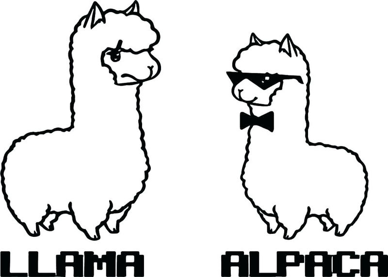 Llama And Alpaca Animal Coloring Page