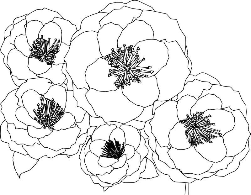 Multiple Flower Coloring Page