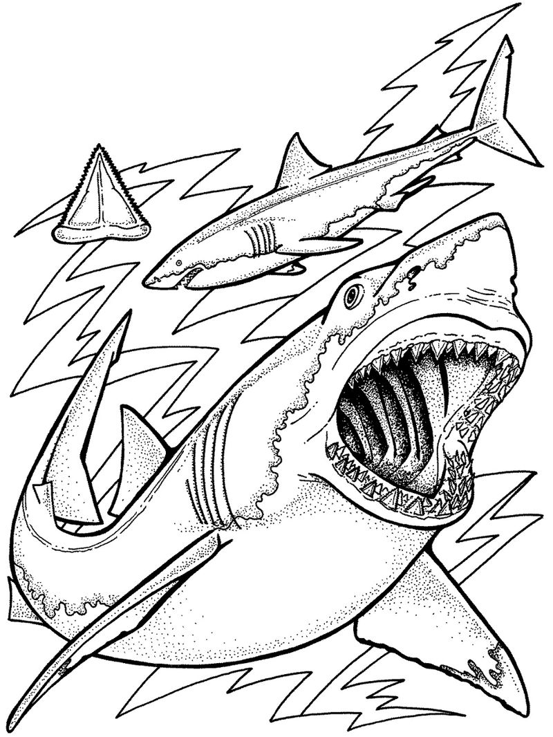 Ocean Fish Coloring Pages 001