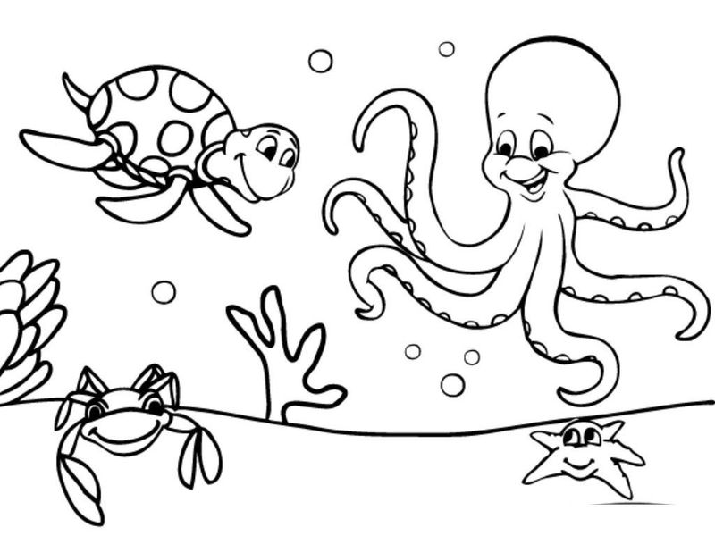 Octopus And Turtle Ocean Coloring Pages