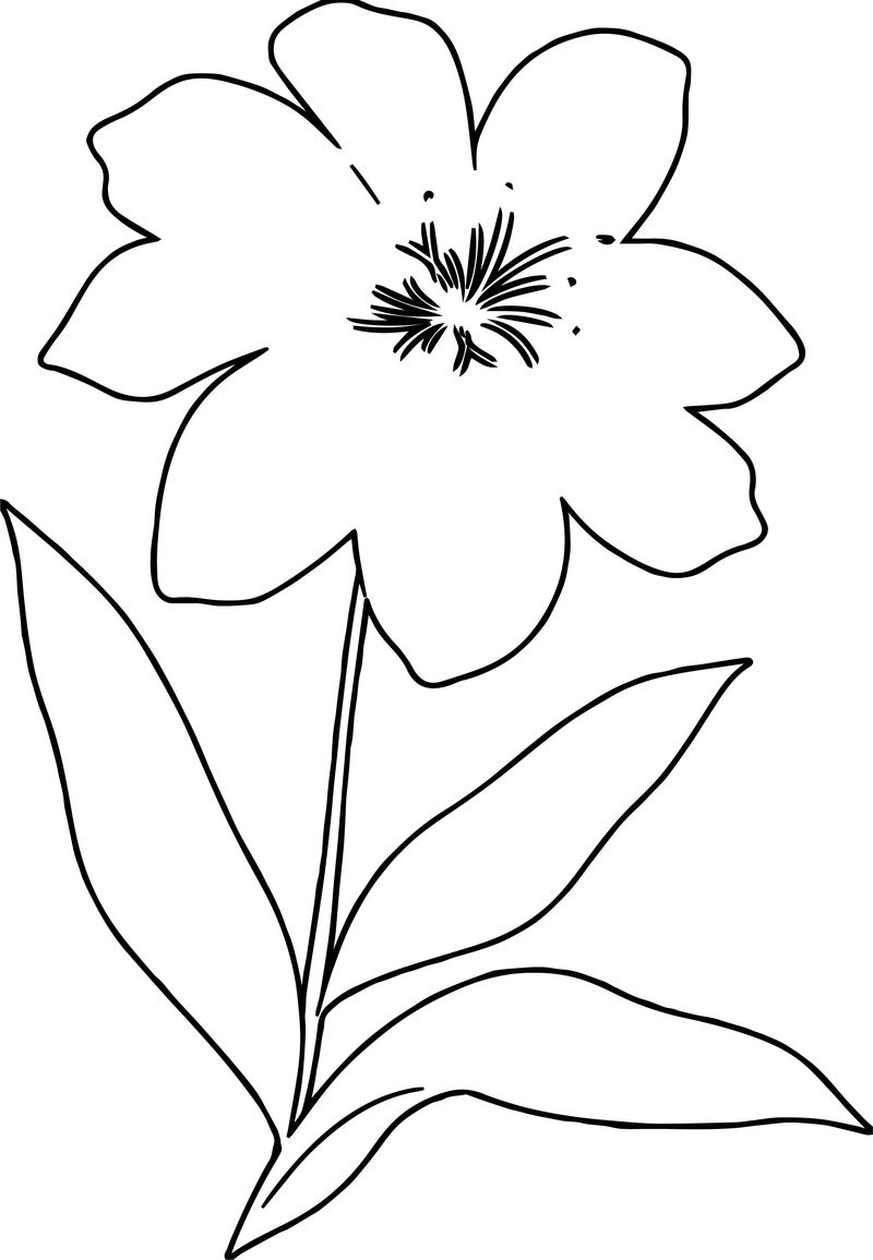 One Flower Coloring Page