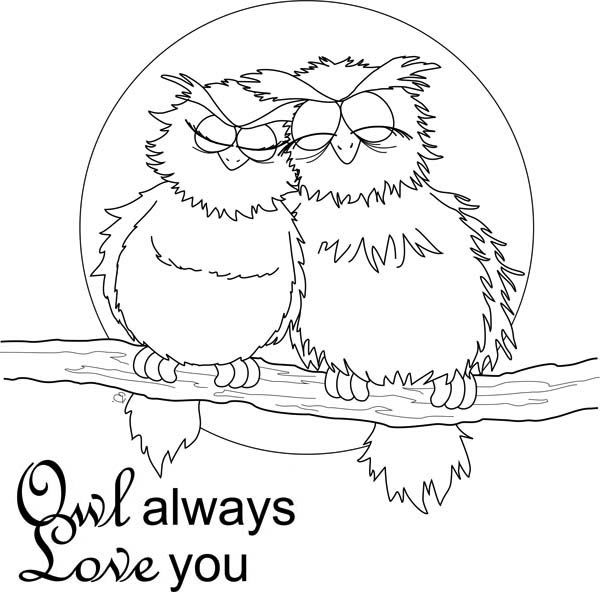 Owl Always Love You Valentines Day Coloring Pages