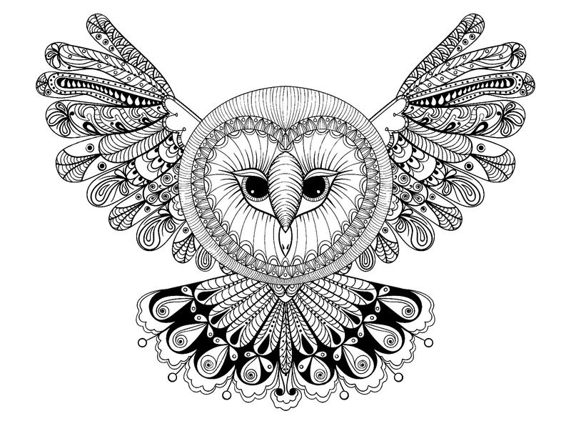 Owl Animal Coloring Pages For Adults