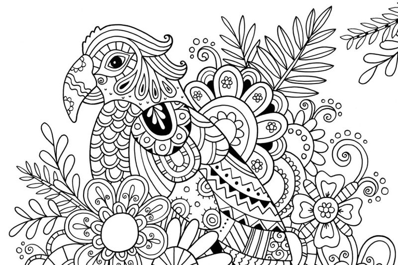 Parrot Among Flowers Adult Coloring Page