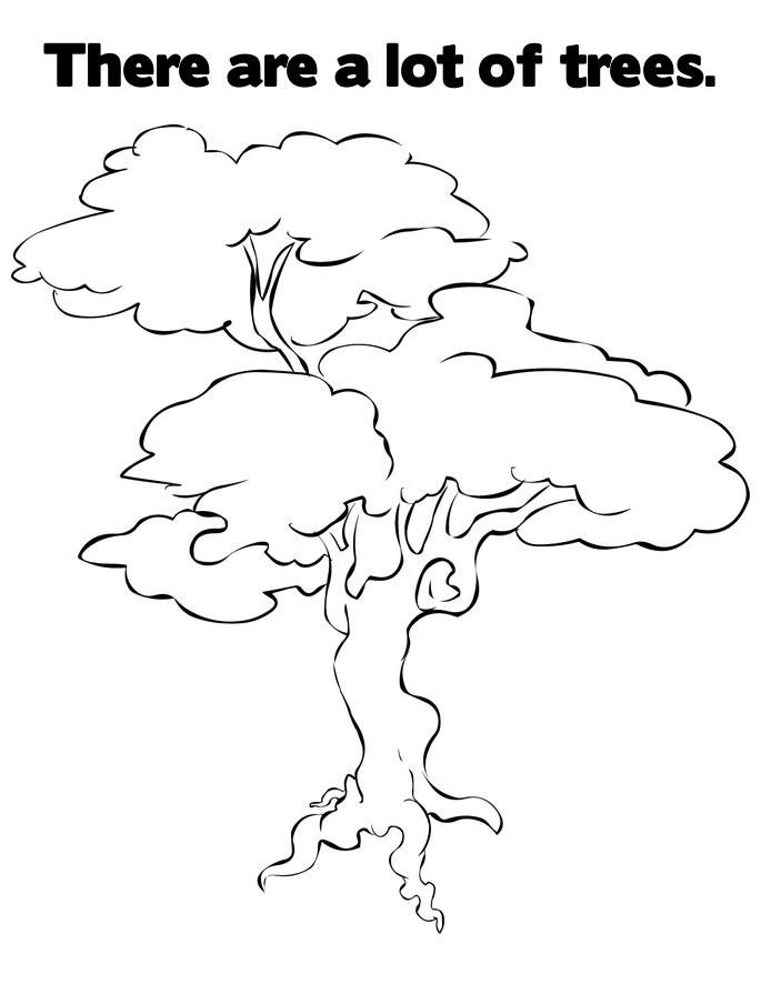 Pecan Tree Coloring Page