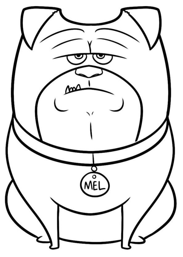 Pet Dog Coloring Pages Printable