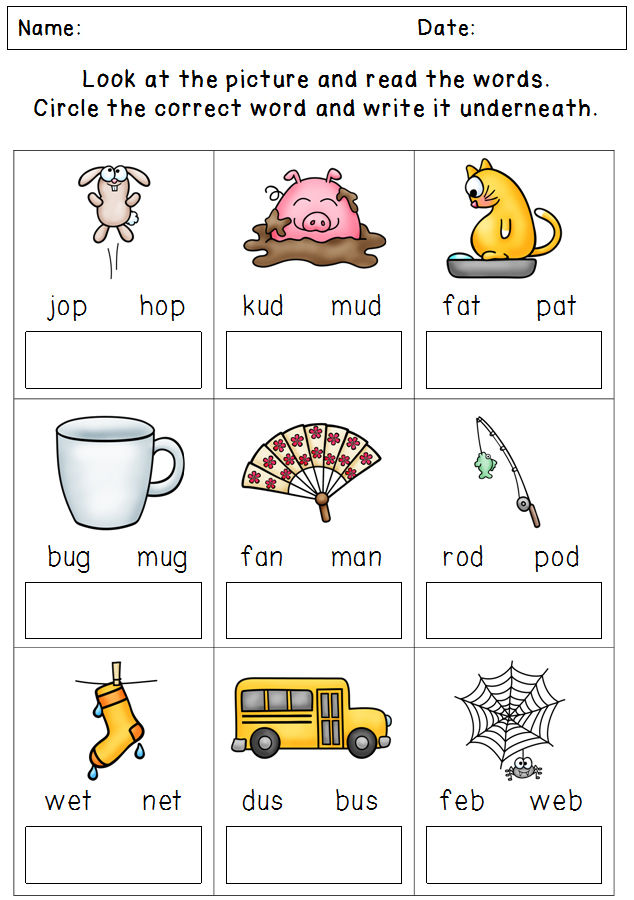 Phonics Circle The Answer Worksheet