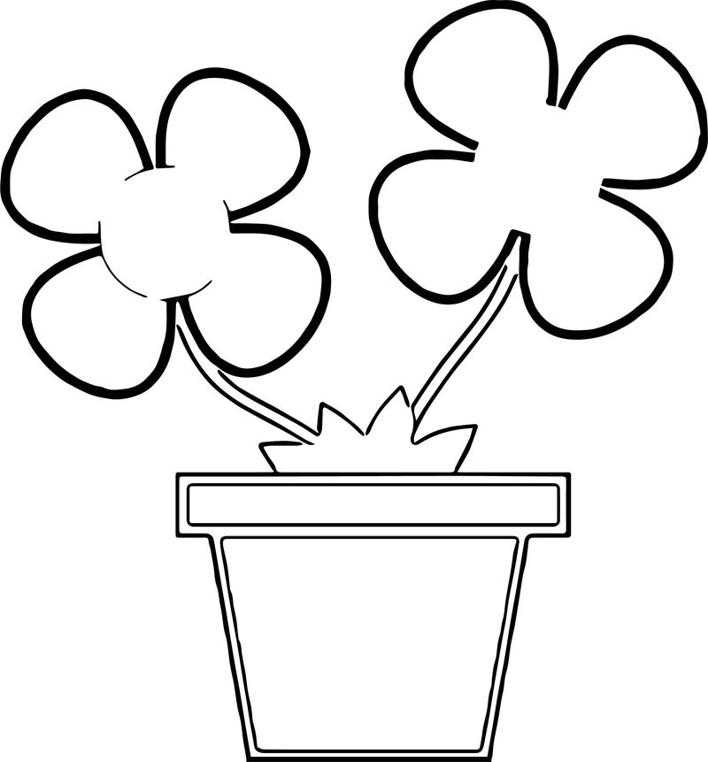 Potted Flowers Coloring Page