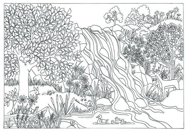 Pretty Awesome Waterfall Coloring Sheet