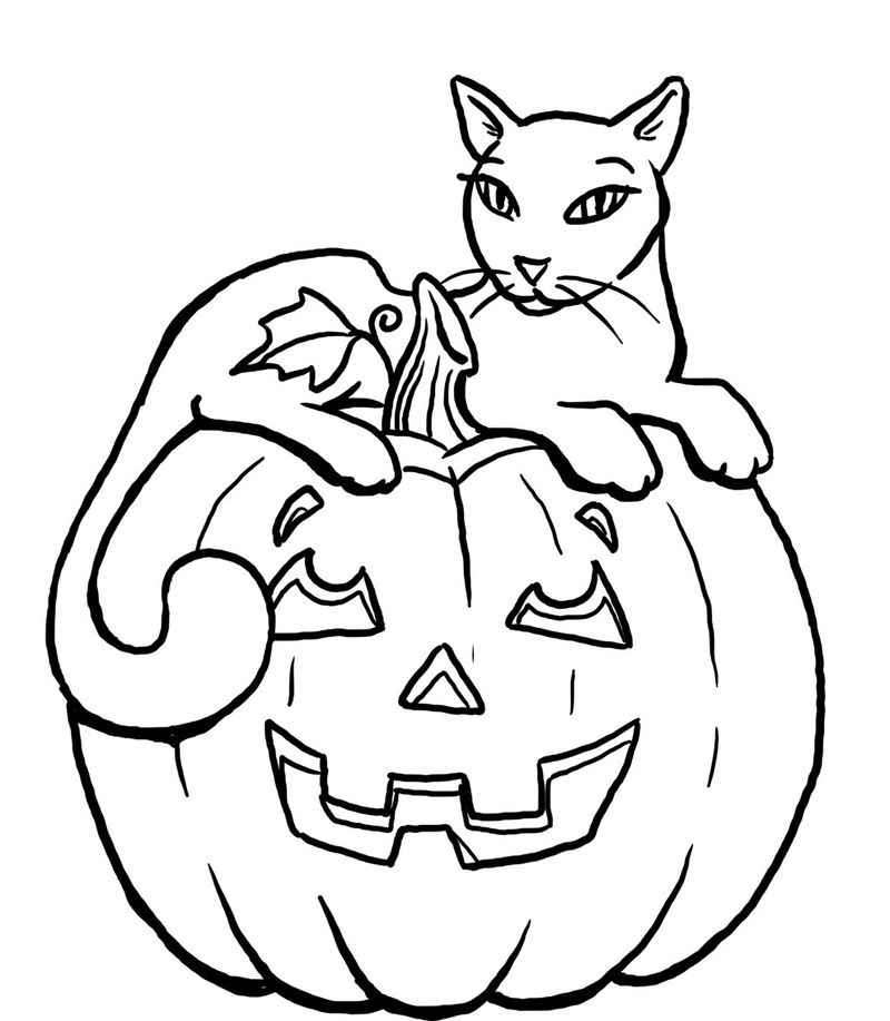 Pretty Halloween Cat On Pumpkin Coloring Page
