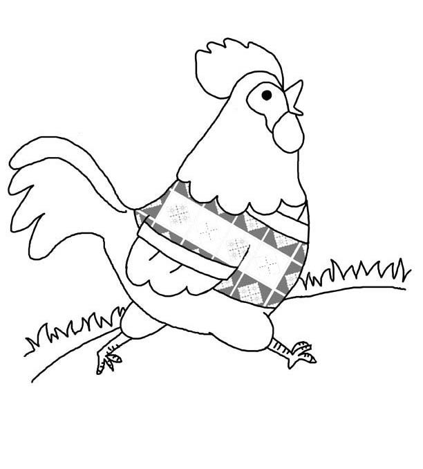 Print Chicken Coloring Page