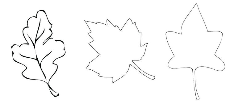 Print Fall Leaves Coloring Pages