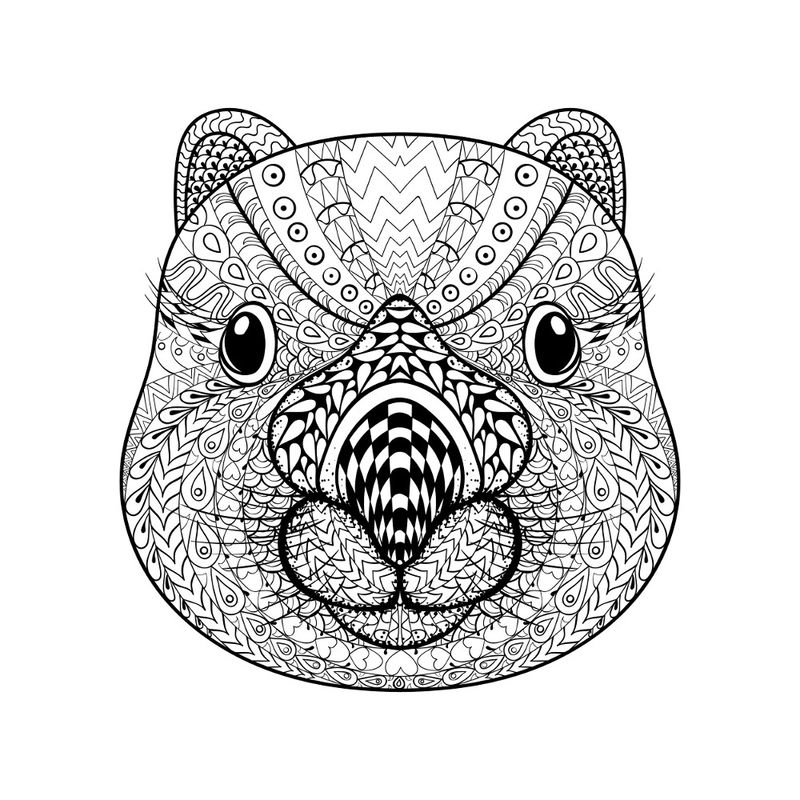 Printable Animal Coloring Pages For Adults 001 1
