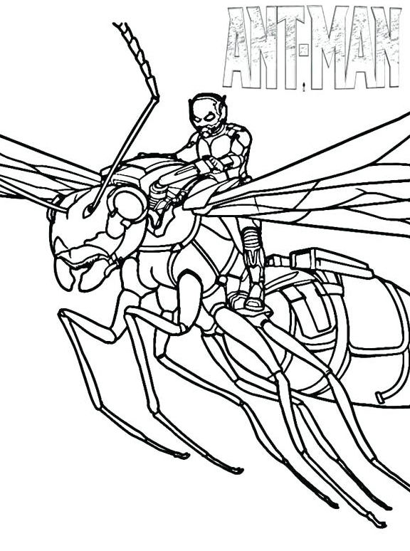 Printable Ant Man Coloring Page