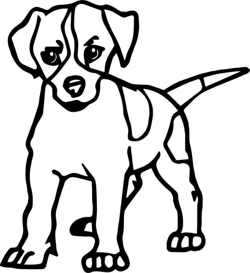 Puppy Dog Dog Puppy Coloring Page