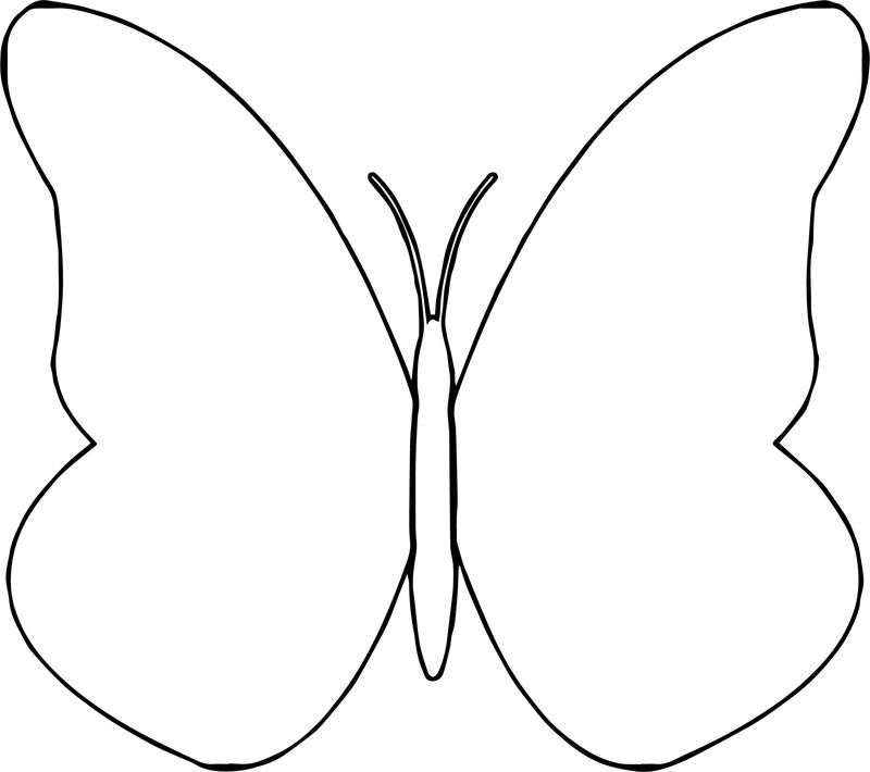 Quetzal Flower Butterfly Coloring Page