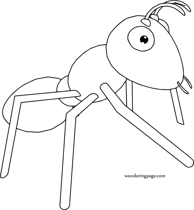 Realistic Ant Coloring Page