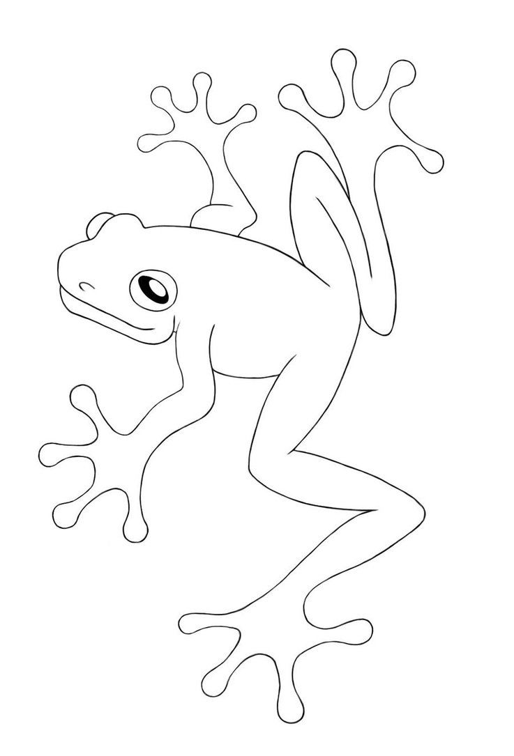 Red Eyed Tree Frog Coloring Pages