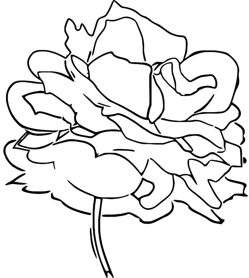 Red Rose Flower Coloring Page