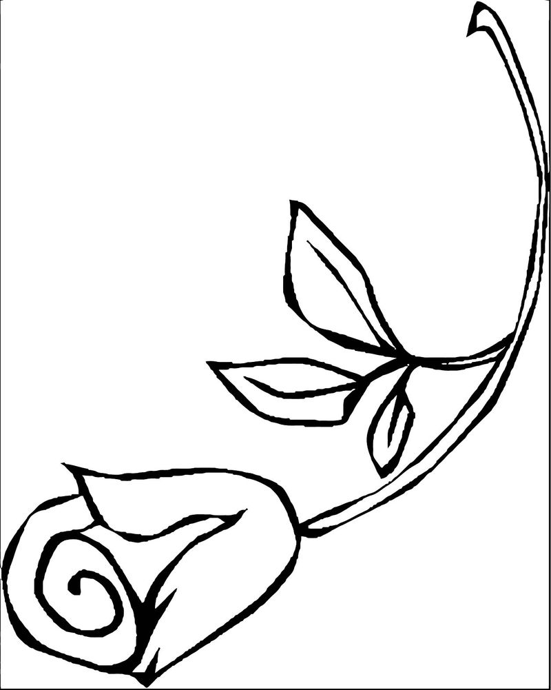 Rose Flower Coloring Page 142