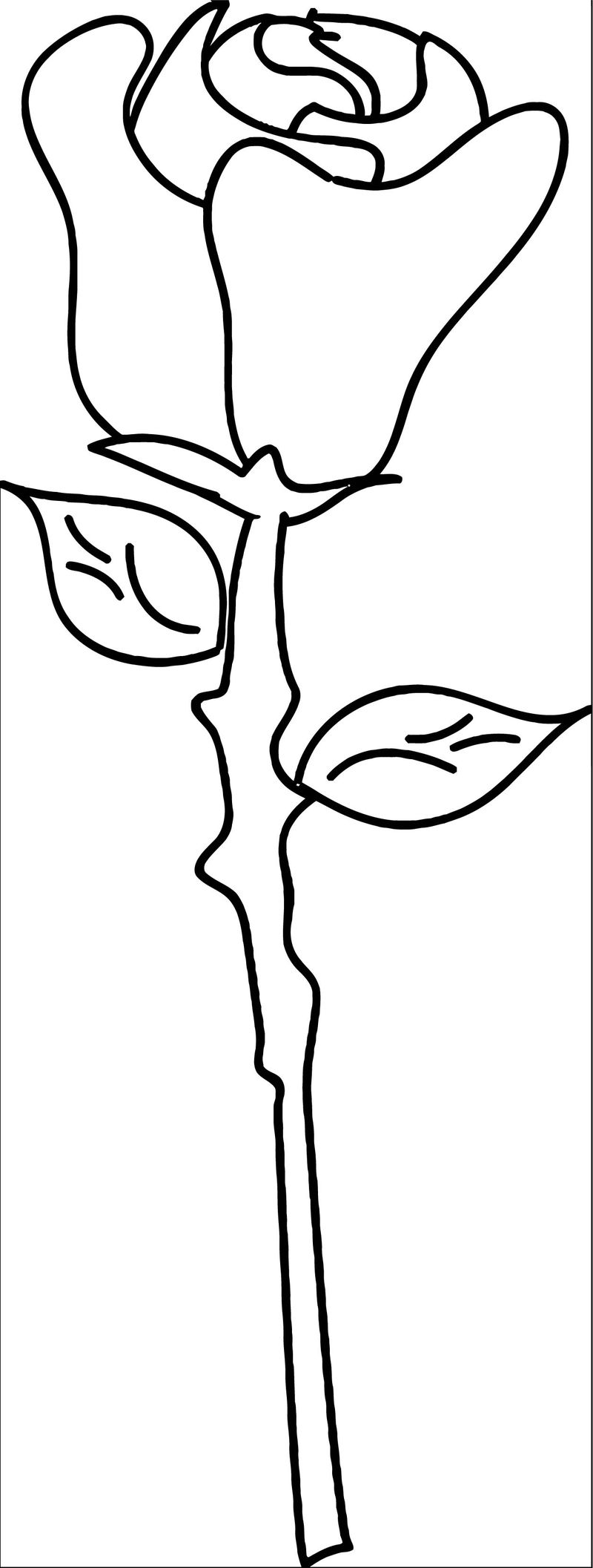 Rose Flower Coloring Page 159