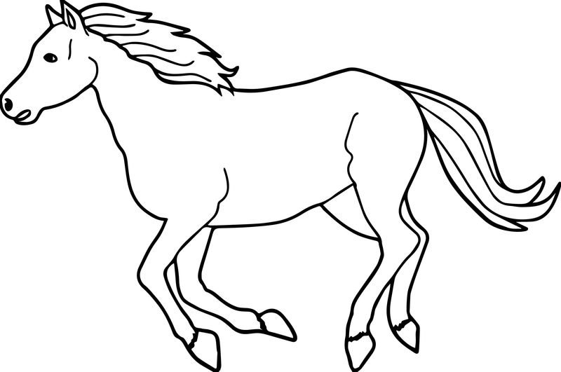 Running arabian horse coloring page