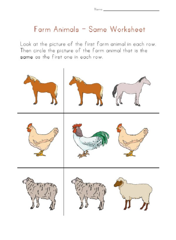 Same And Different Pre K Worksheets 001