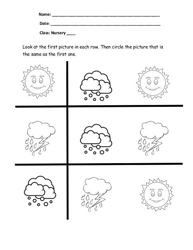 Same Or Different Worksheets Free